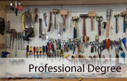 Licensed Professional Degrees